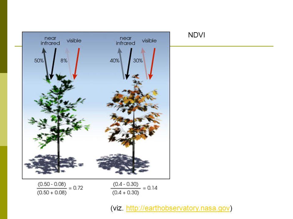 Vegetační indexy NDVI  Typické hodnoty (AVHRR, podle Williams, 1995) PovrchNDVI Velmi hustá vegetace0.500 Středně hustá vegetace0.140 Řídká vegetace0.090 Holá půda0.025 Oblačnost0.002 Sníh a led-0.046 Voda-0.257