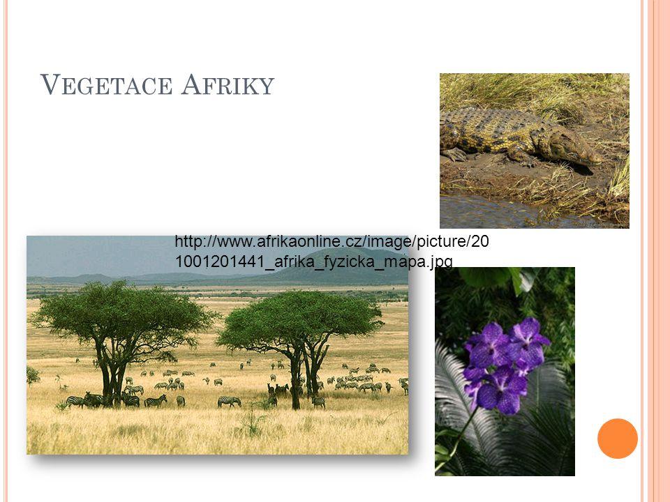V EGETACE A FRIKY http://www.afrikaonline.cz/image/picture/20 1001201441_afrika_fyzicka_mapa.jpg