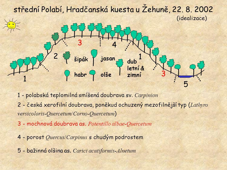 1 2 3 4 1 3 5 střední Polabí, Hradčanská kuesta u Žehuně, 22.
