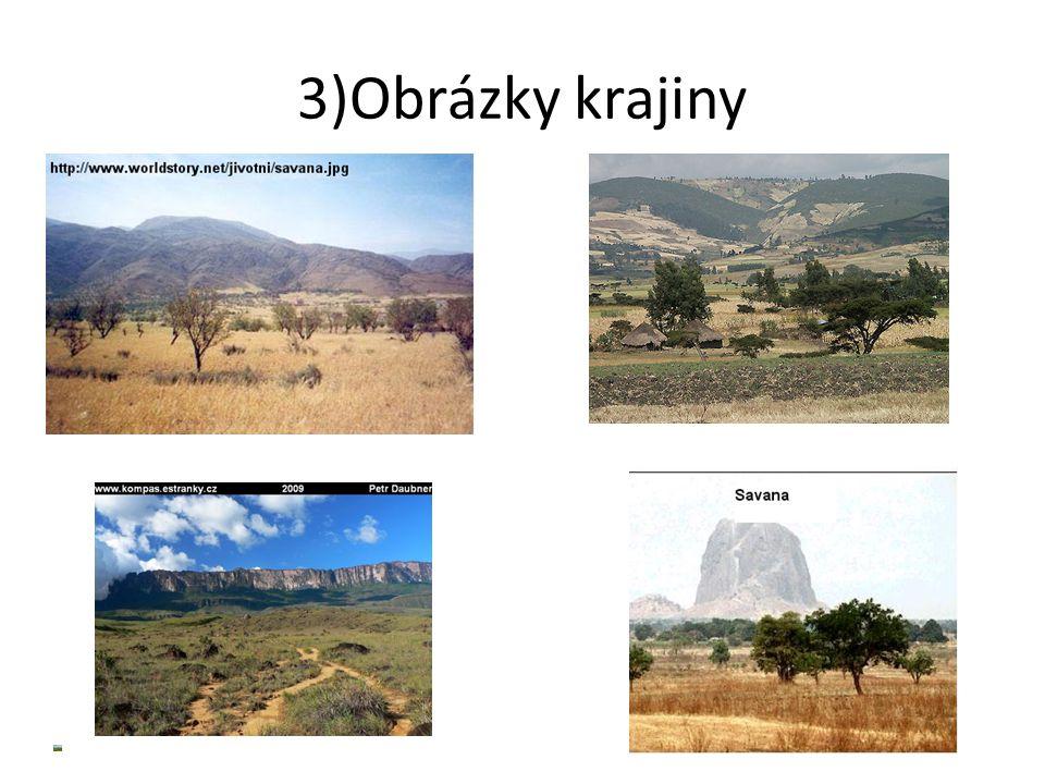 4)Co zde žije Sloni Zebry Antilopy Hroši Lvi Žirafy Tygři Klokani