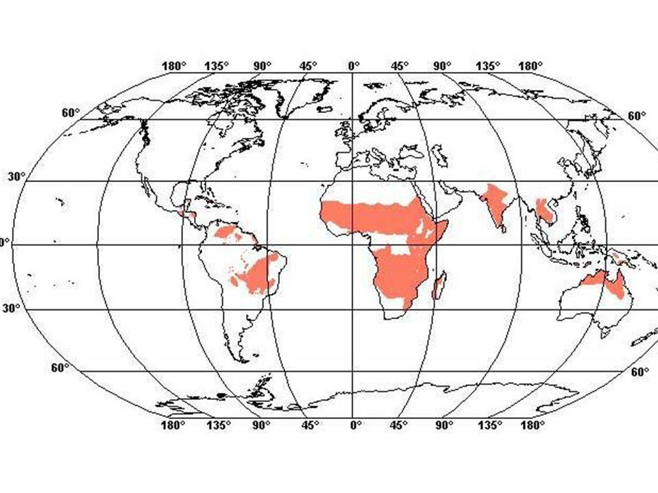 Seznam použitých zdrojů Školní Atlas světa Učebnice Zeměpis 6.