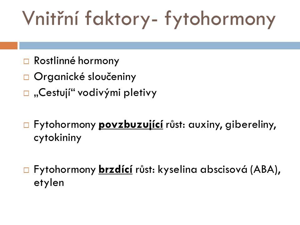 """Vnitřní faktory- fytohormony  Rostlinné hormony  Organické sloučeniny  """"Cestují"""" vodivými pletivy  Fytohormony povzbuzující růst: auxiny, gibereli"""