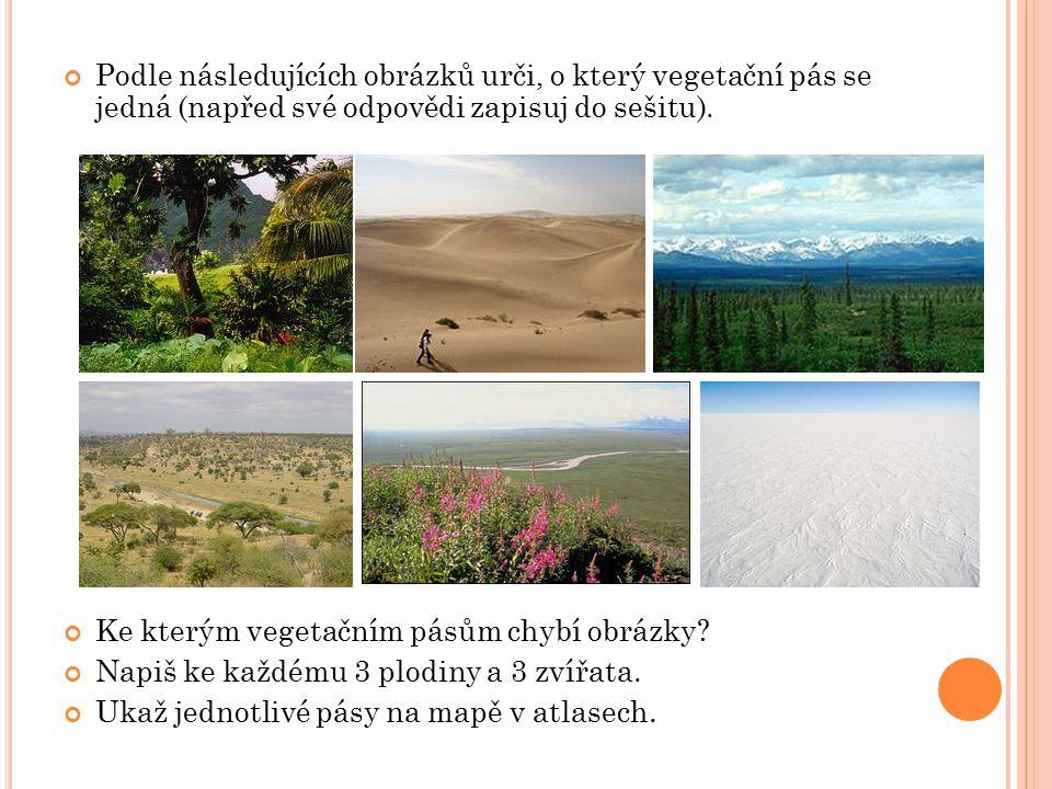 Podle následujících obrázků urči, o který vegetační pás se jedná (napřed své odpovědi zapisuj do sešitu).