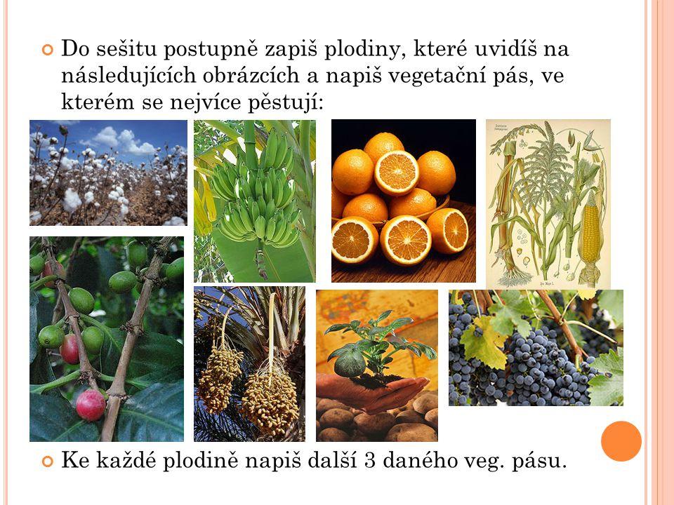 Do sešitu postupně zapiš plodiny, které uvidíš na následujících obrázcích a napiš vegetační pás, ve kterém se nejvíce pěstují: Ke každé plodině napiš další 3 daného veg.