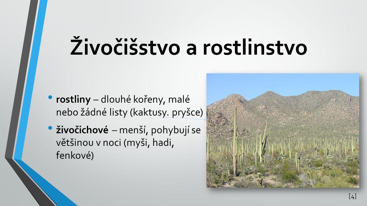 Živočišstvo a rostlinstvo rostliny – dlouhé kořeny, malé nebo žádné listy (kaktusy. pryšce) živočichové – menší, pohybují se většinou v noci (myši, ha
