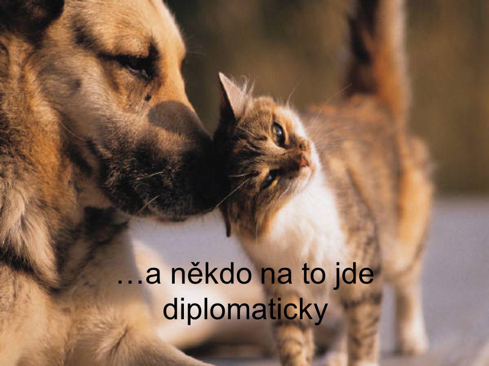 …a někdo na to jde diplomaticky