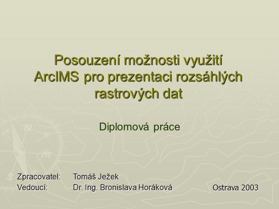 Posouzení možnosti využití ArcIMS pro prezentaci rozsáhlých rastrových dat Diplomová práce Vedoucí: Dr.