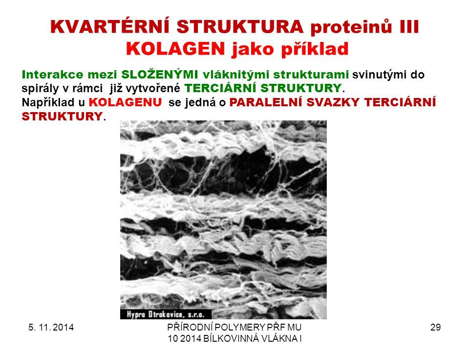 KVARTÉRNÍ STRUKTURA proteinů III KOLAGEN jako příklad 5. 11. 2014PŘÍRODNÍ POLYMERY PŘF MU 10 2014 BÍLKOVINNÁ VLÁKNA I 29 Interakce mezi SLOŽENÝMI vlák