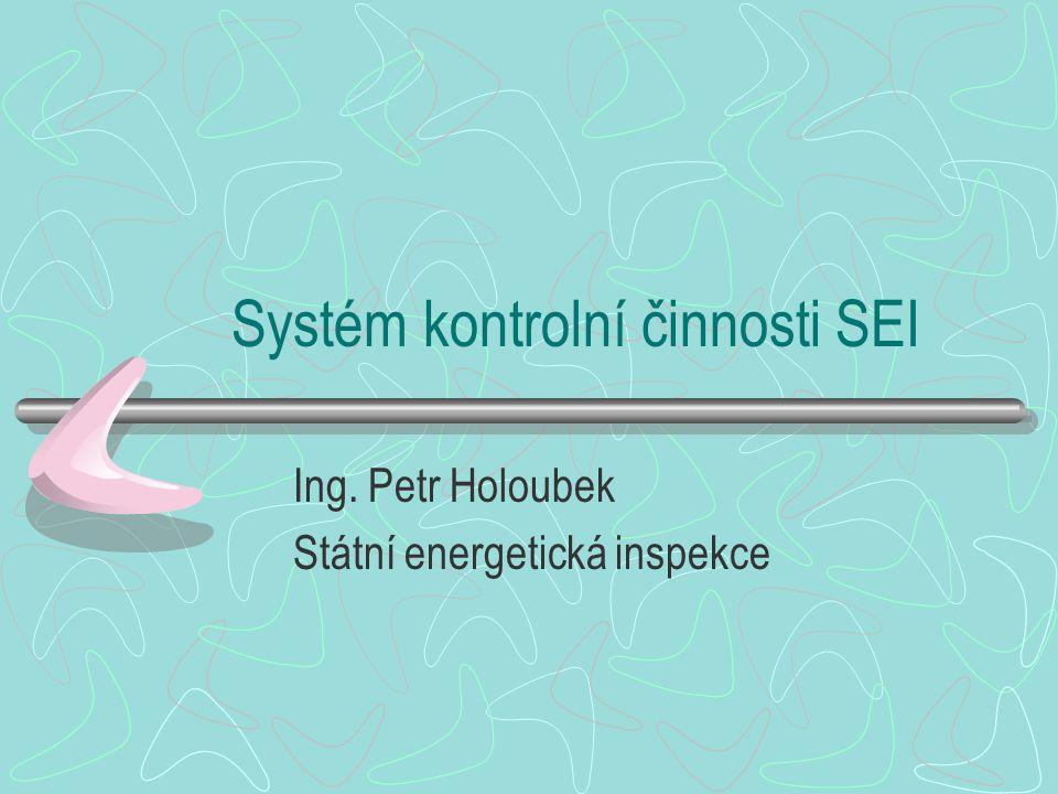 Systém kontrolní činnosti SEI Ing. Petr Holoubek Státní energetická inspekce