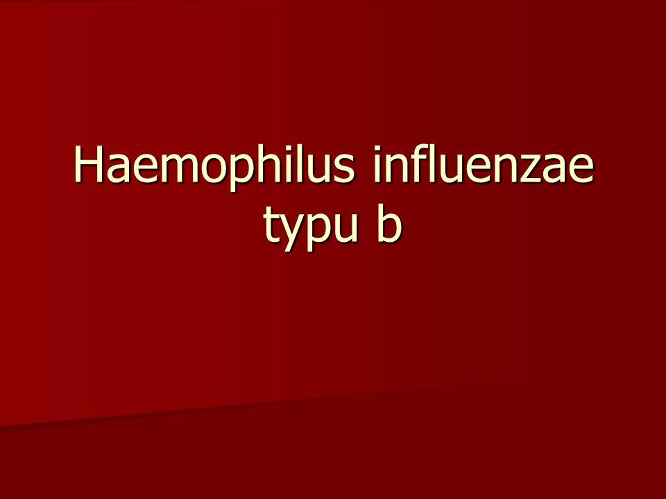 Existuje několik typů této bakterie, ale pouze typ b způsobuje nejčastěji (až 95%) závažnější formy této infekční choroby.