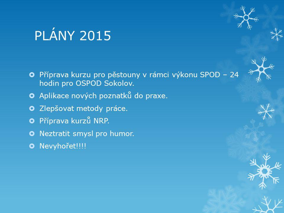 PLÁNY 2015  Příprava kurzu pro pěstouny v rámci výkonu SPOD – 24 hodin pro OSPOD Sokolov.  Aplikace nových poznatků do praxe.  Zlepšovat metody prá