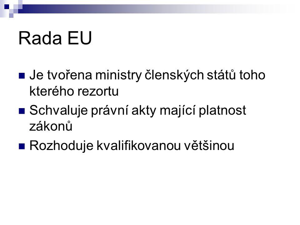 """Evropská komise Nahrazuje """"evropskou vládu (nejvyšší orgán evropské výkonné moci) Jako jediná má zákonodárnou iniciativu Současným předsedou je Jose Manuel Barroso, komisařem za ČR je Vladimír Špidla"""
