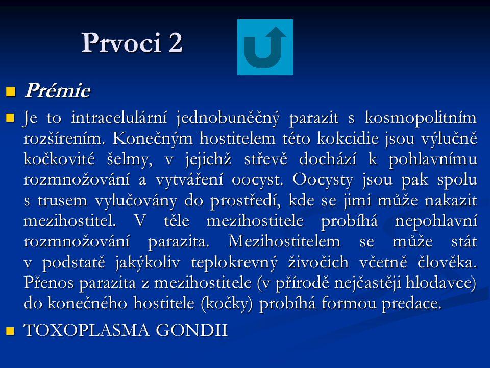 Prvoci 2 Prémie Prémie Je to intracelulární jednobuněčný parazit s kosmopolitním rozšírením. Konečným hostitelem této kokcidie jsou výlučně kočkovité
