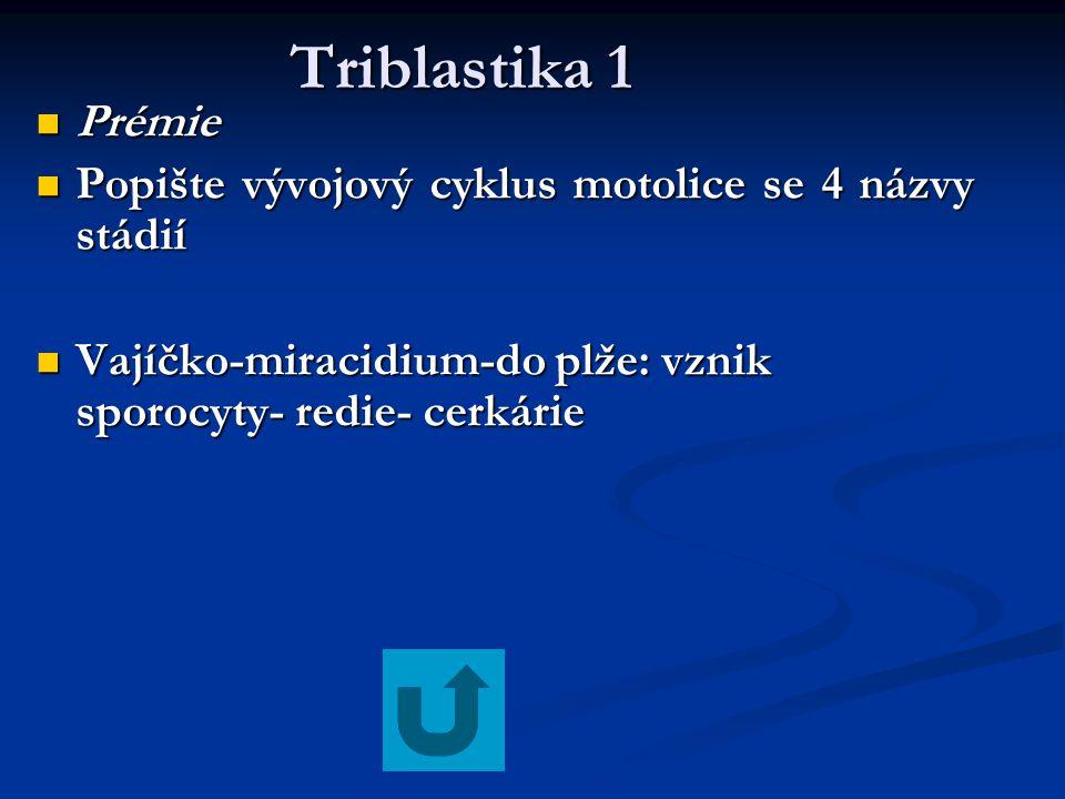 Triblastika 1 Triblastika 1 Prémie Prémie Popište vývojový cyklus motolice se 4 názvy stádií Popište vývojový cyklus motolice se 4 názvy stádií Vajíčk