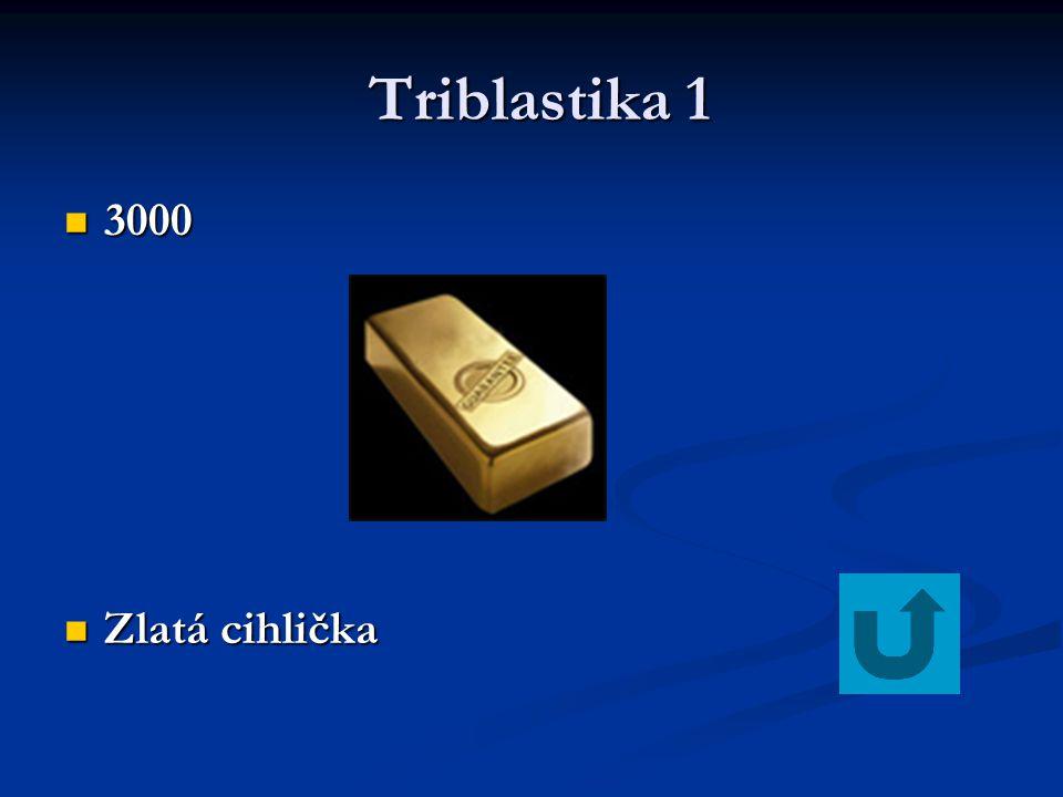 Triblastika 1 Triblastika 1 3000 3000 Zlatá cihlička Zlatá cihlička
