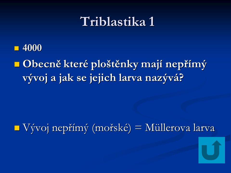 Triblastika 1 Triblastika 1 4000 4000 Obecně které ploštěnky mají nepřímý vývoj a jak se jejich larva nazývá? Obecně které ploštěnky mají nepřímý vývo