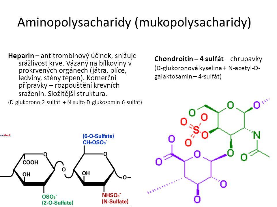 Aminopolysacharidy (mukopolysacharidy) Heparin – antitrombinový účinek, snižuje srážlivost krve.