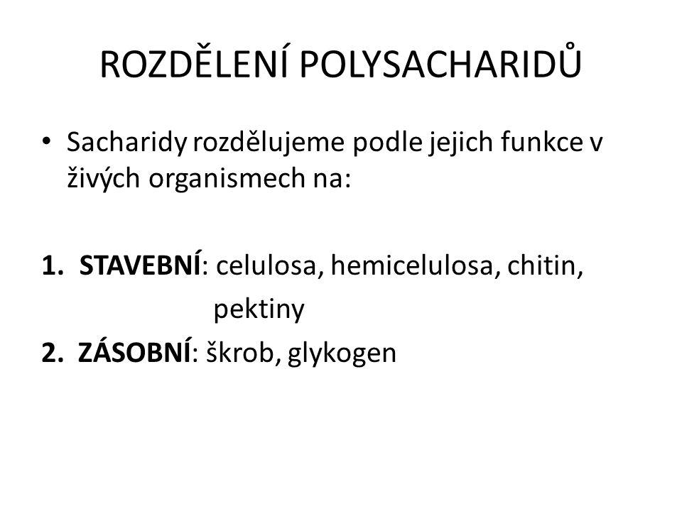 ROZDĚLENÍ POLYSACHARIDŮ Sacharidy rozdělujeme podle jejich funkce v živých organismech na: 1.STAVEBNÍ: celulosa, hemicelulosa, chitin, pektiny 2.