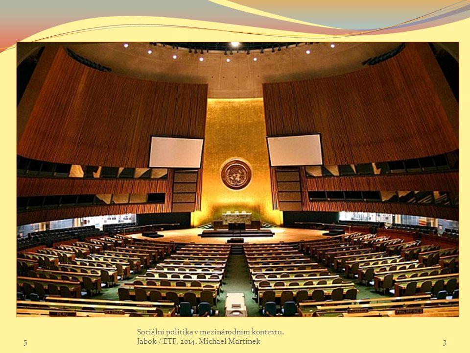 Skupina světové banky  Jedná se o několik finančních organizací sdružených pod autoritou společných institucí  Vedení WB Radou guvernérů  V radě jsou zastoupeny jedním členem všechny členské státy  Určuje základní politiky jednotlivých institucí, dohlíží na činnost a hospodaření organizace  Mezi zasedáními Rady guvernérů spravuje záležitosti WB Rada výkonných ředitelů  Svého zástupce v ní má pět největších donorů – UK, US, Fr, Jap, Něm  Ostatní státy jsou zastoupeny 19-ti člennou skupinou dočasně volených ředitelů (regionální klíč)  Inspekční panel  Je dalším společným orgánem pro všechny instituce skupiny  Řeší veškeré spory mezi členskými státy, institucemi WB  Řeší stížnosti na činnost WB 564 Sociální politika v mezinárodním kontextu.