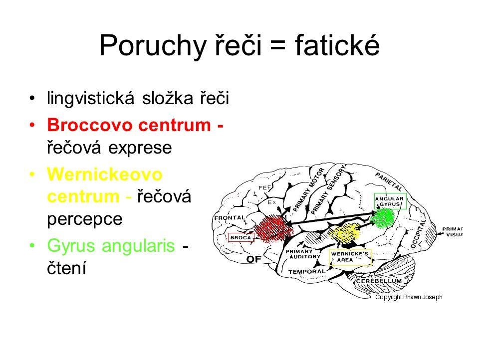 Agnozie zraková - nerozpoznávání viděného předmětu; oboustranné okcipitotemporální léze (zrakový asociační kortex); prosopagnosie - porucha rozeznání známých obličejů sluchová - temporální lalok taktilní - parietální lalok