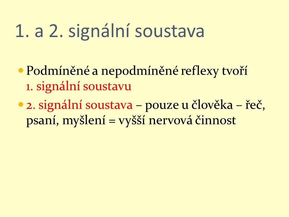 1. a 2. signální soustava Podmíněné a nepodmíněné reflexy tvoří 1. signální soustavu 2. signální soustava – pouze u člověka – řeč, psaní, myšlení = vy