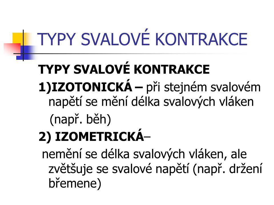 TYPY SVALOVÉ KONTRAKCE 1)IZOTONICKÁ – při stejném svalovém napětí se mění délka svalových vláken (např. běh) 2) IZOMETRICKÁ– nemění se délka svalových