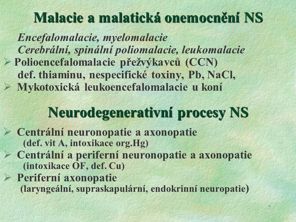 8Myelinopatie Nezánětlivé procesy, porucha tvorby a udržování myelinu je Hypomyelinizace : všechna zvířata, vyjma koní .