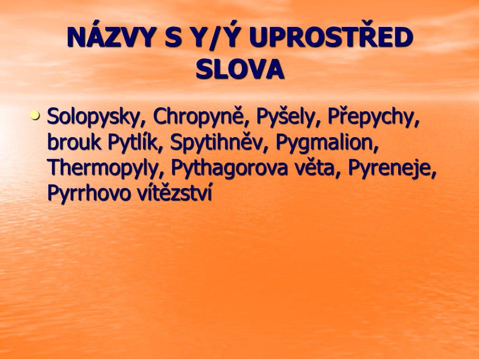 NÁZVY S Y/Ý UPROSTŘED SLOVA Solopysky, Chropyně, Pyšely, Přepychy, brouk Pytlík, Spytihněv, Pygmalion, Thermopyly, Pythagorova věta, Pyreneje, Pyrrhov