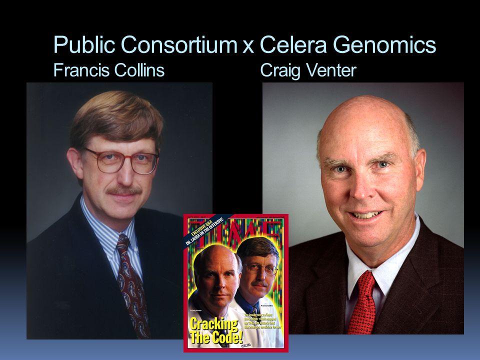 Public Consortium x Celera Genomics Francis Collins Craig Venter