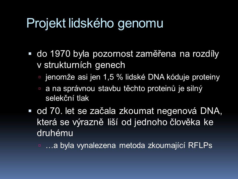 Projekt lidského genomu  do 1970 byla pozornost zaměřena na rozdíly v strukturních genech  jenomže asi jen 1,5 % lidské DNA kóduje proteiny  a na s
