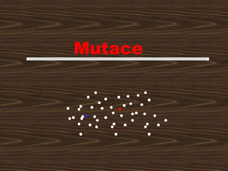 Obsah Mutace jakožto zdroj evolučních novinek –mutacionismus –typy mutací Nenáhodnost mutací co do místa, času a frekvence Nenáhodnost co do směru –fluktuační test –Cairnsonovské mutace –cílené mutace Bariery lamarckistické evoluce –zpětný tok informace od proteinů k DNA –weismannovská bariera –epigeneze Makromutace