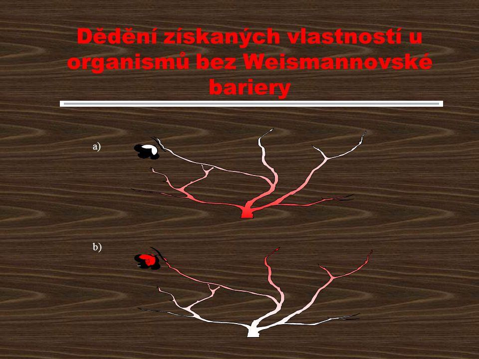 Dědění získaných vlastností u organismů bez Weismannovské bariery a) b)