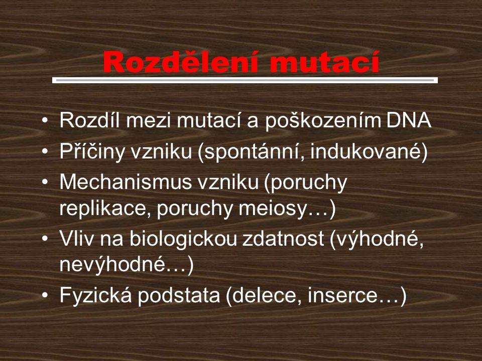 Rozdělení mutací Rozdíl mezi mutací a poškozením DNA Příčiny vzniku (spontánní, indukované) Mechanismus vzniku (poruchy replikace, poruchy meiosy…) Vl