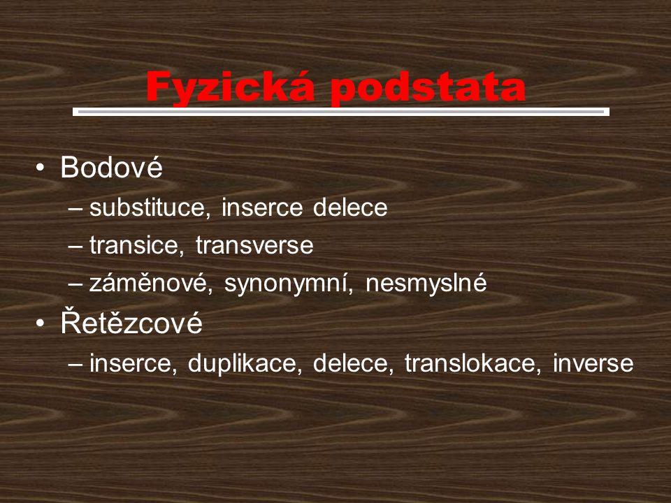 Fyzická podstata Bodové –substituce, inserce delece –transice, transverse –záměnové, synonymní, nesmyslné Řetězcové –inserce, duplikace, delece, trans