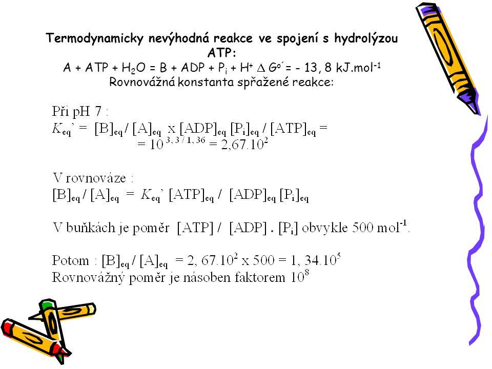 Termodynamicky nevýhodná reakce ve spojení s hydrolýzou ATP: A + ATP + H 2 O = B + ADP + P i + H +  G o´ = - 13, 8 kJ.mol -1 Rovnovážná konstanta spř