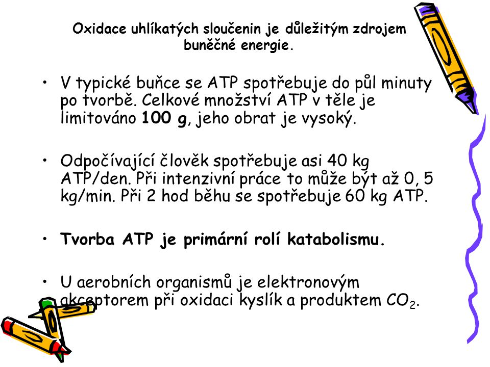 V typické buňce se ATP spotřebuje do půl minuty po tvorbě. Celkové množství ATP v těle je limitováno 100 g, jeho obrat je vysoký. Odpočívající člověk