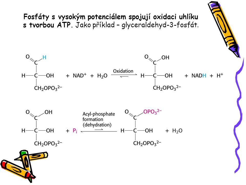 Fosfáty s vysokým potenciálem spojují oxidaci uhlíku s tvorbou ATP. Jako příklad – glyceraldehyd-3-fosfát.