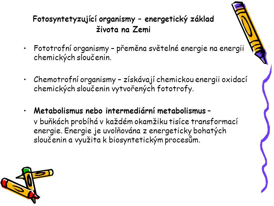 Fotosyntetyzující organismy – energetický základ života na Zemi Fototrofní organismy – přeměna světelné energie na energii chemických sloučenin. Chemo