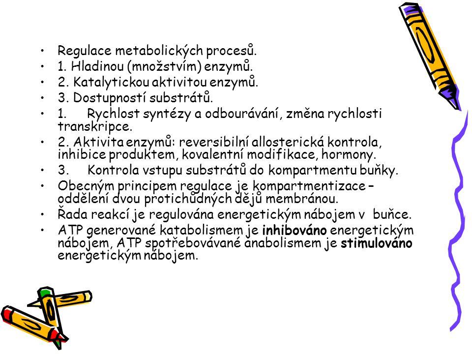 Regulace metabolických procesů. 1. Hladinou (množstvím) enzymů. 2. Katalytickou aktivitou enzymů. 3. Dostupností substrátů. 1.Rychlost syntézy a odbou