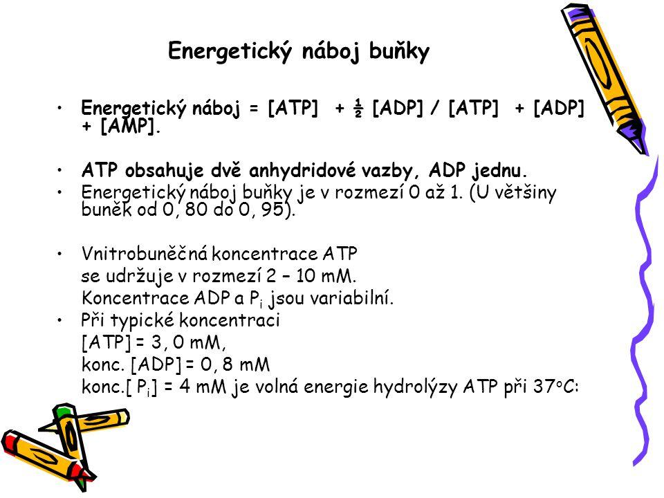 Energetický náboj buňky Energetický náboj = [ATP] + ½ [ADP] / [ATP] + [ADP] + [AMP]. ATP obsahuje dvě anhydridové vazby, ADP jednu. Energetický náboj