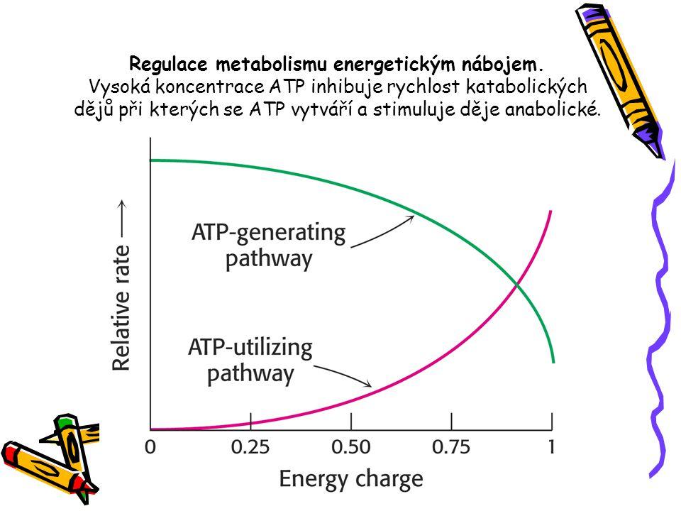 Regulace metabolismu energetickým nábojem. Vysoká koncentrace ATP inhibuje rychlost katabolických dějů při kterých se ATP vytváří a stimuluje děje ana