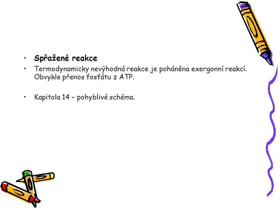 Spřažené reakce Termodynamicky nevýhodná reakce je poháněna exergonní reakcí. Obvykle přenos fosfátu z ATP. Kapitola 14 – pohyblivé schéma.