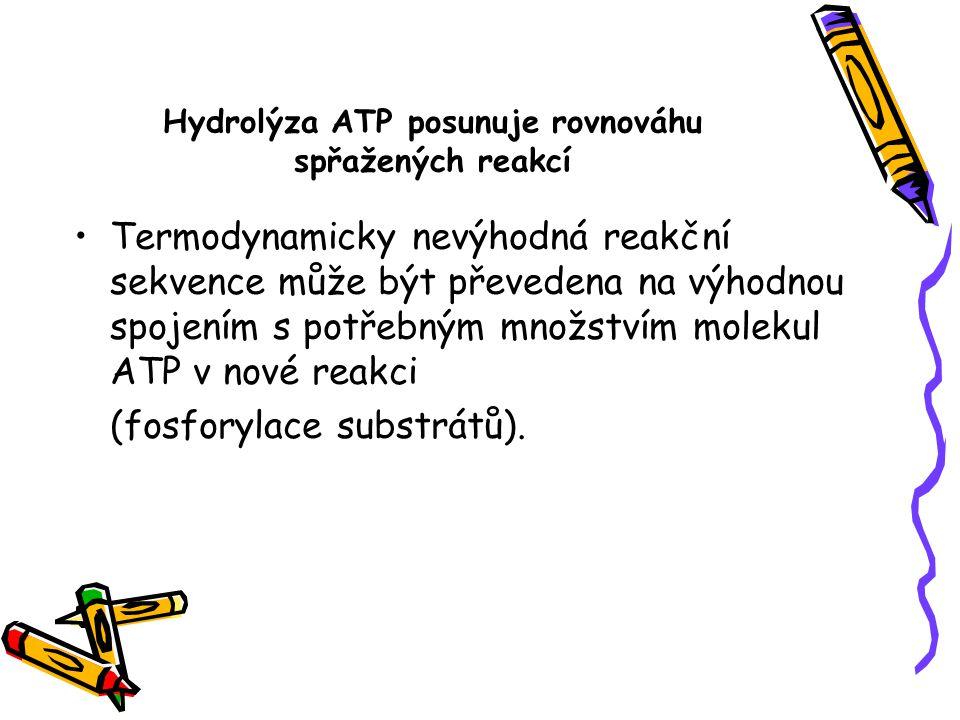 Hydrolýza ATP posunuje rovnováhu spřažených reakcí Termodynamicky nevýhodná reakční sekvence může být převedena na výhodnou spojením s potřebným množs