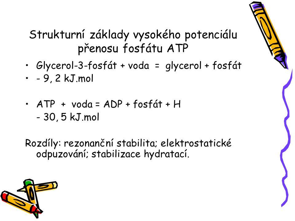 Strukturní základy vysokého potenciálu přenosu fosfátu ATP Glycerol-3-fosfát + voda = glycerol + fosfát - 9, 2 kJ.mol ATP + voda = ADP + fosfát + H -