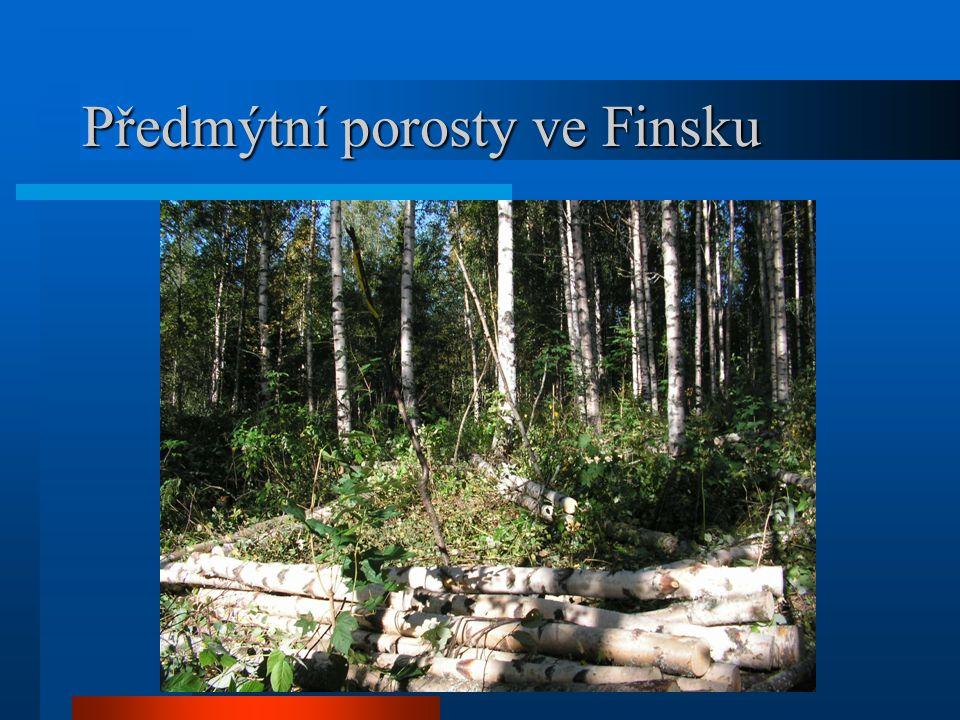 Předmýtní porosty ve Finsku