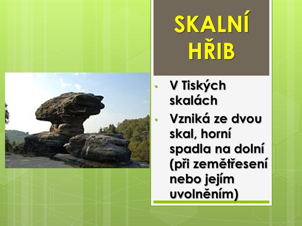SKALNÍ HŘIB V Tiských skalách V Tiských skalách Vzniká ze dvou skal, horní spadla na dolní (při zemětřesení nebo jejím uvolněním) Vzniká ze dvou skal,