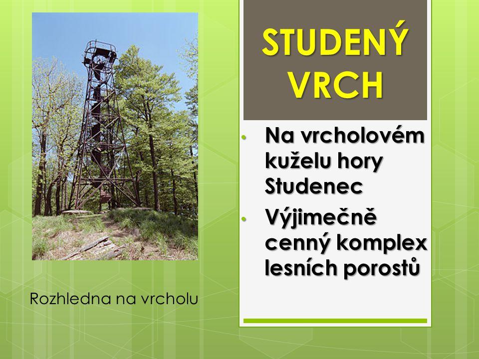 STUDENÝ VRCH Na vrcholovém kuželu hory Studenec Na vrcholovém kuželu hory Studenec Výjimečně cenný komplex lesních porostů Výjimečně cenný komplex les