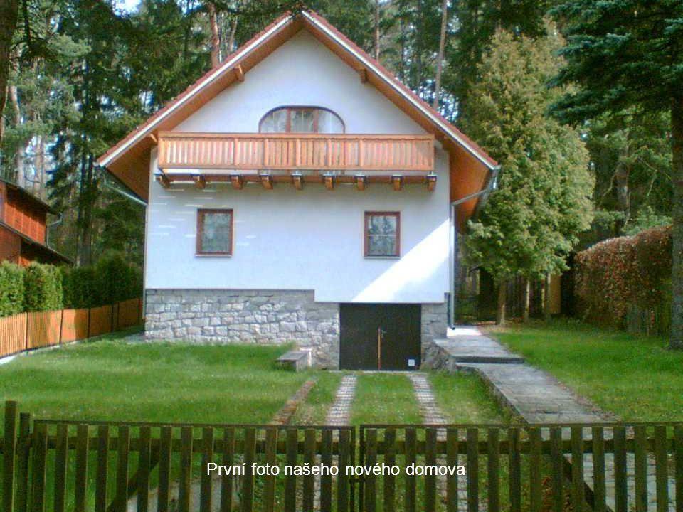 Rybník Horní Zástava u Sedlice lidově zvaný Pila podle Pilského mlýna na hrázi. Zde jsme nalezli nový domov v lesích mezi lesy Křídlí a Hradec.