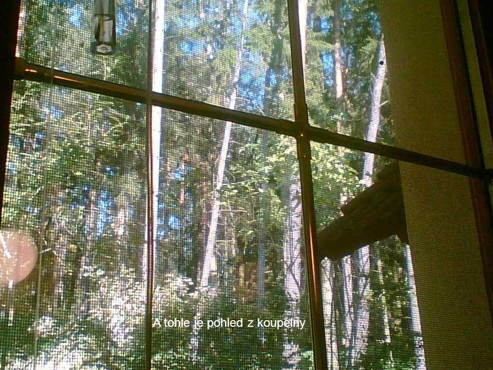 Pohled odzadu z lesa za domem