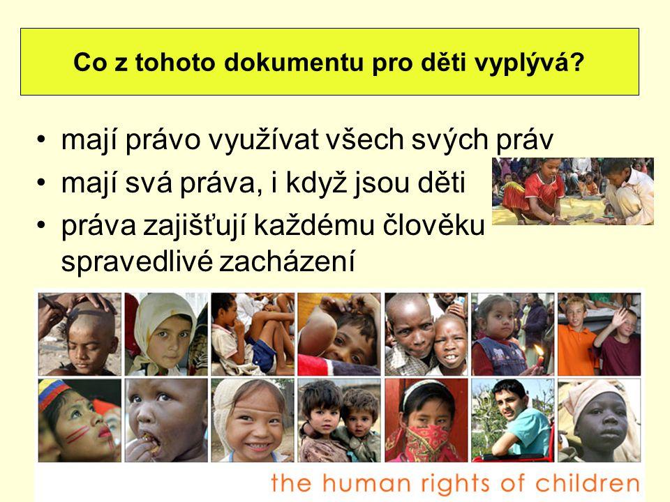 mají právo využívat všech svých práv mají svá práva, i když jsou děti práva zajišťují každému člověku spravedlivé zacházení Co z tohoto dokumentu pro
